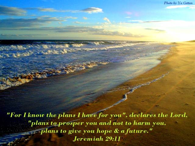 Final Wednesday Word Of The Week For 2010 God S Plan